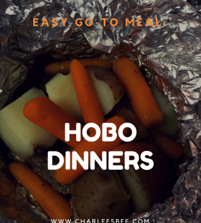 Hobo dinners