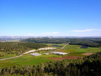 Elah Valley. © Charles E. McCracken Archives.