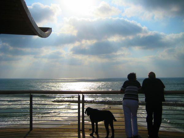 Mediterranean view from coastal Ashkelon, 50 miles south of Tel Aviv, Israel.