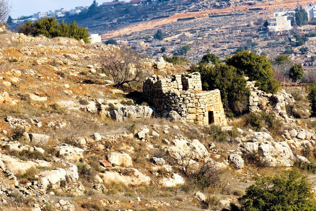 Watchtower in the Judean Hills