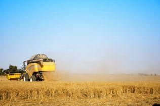 2_Israel Wheat Field_p