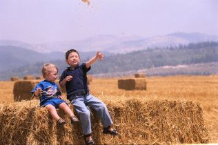3_The Shavuot holiday in Israel Children sit on a pile of hay in a wheat