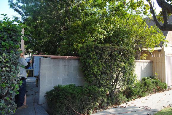 fence-before.jpg