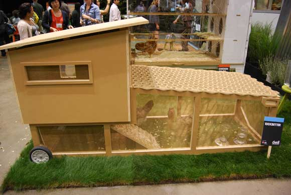 modern-chicken-coop.jpg