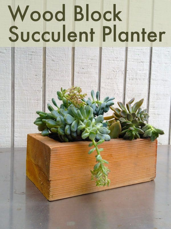 wood-block-succulent-planter