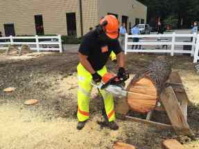 stihl-cordless-chainsaw