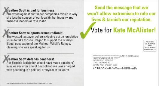 Liberal mailer sent to all District 1 voters recently
