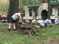 Cutting up branches for disposal