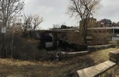 Bowl and Bridge area now