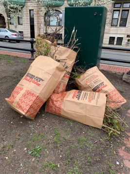 Bags Full of Cleanup Matter
