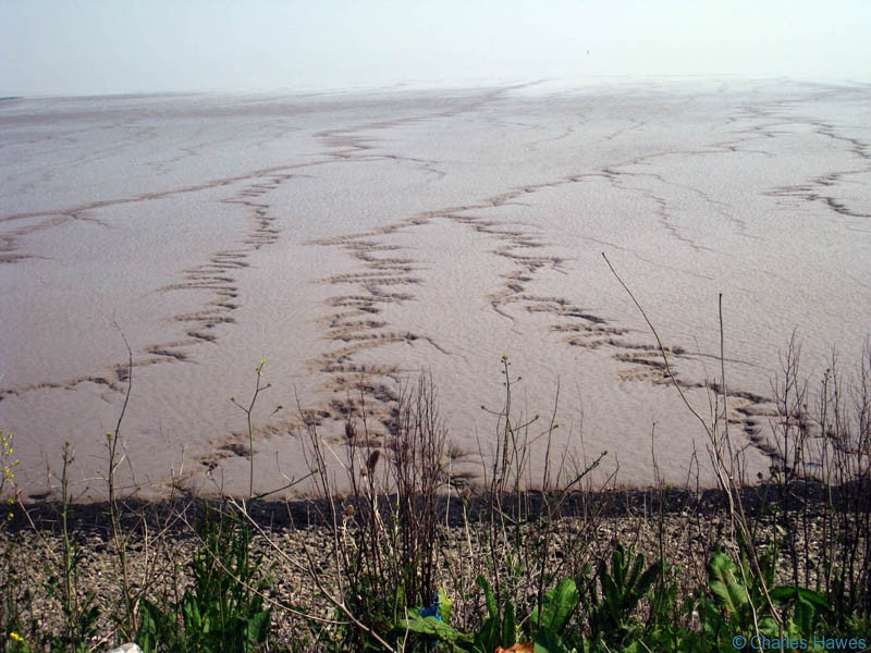 Extraordinary mudscapes as you approach Cardiff on the wales Coast path. Photograph by Charles hawes. Walking in Wales.