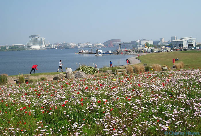 Cardiff Bay as you approach the barrage on the Wales Coast path. Photograph by Charles Hawes. Walking in Wales.