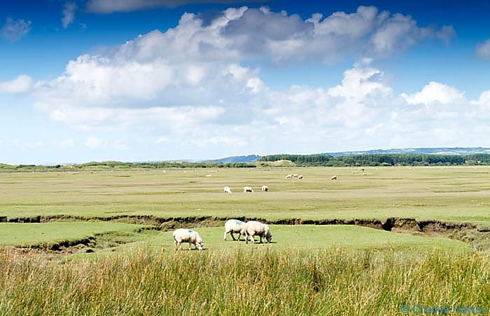 Landimore Marshtaken from The Wales Coast Path, photographed by Charles Hawes Between Rhossili and Llanrhidian. Walking in Wales.