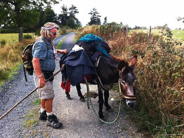 pilgrim with donkey heading home between Les Faux and Aumont Aubrac on The way of St James, France, Photographed by Charles Hawes, Route St Jacques, GR65.