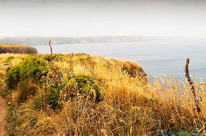 View from The Wales Coast Path from near  Marloes in Pembrokeshire, photographed by Charles Hawes