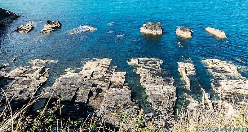 Rock platform off the Pembrokeshire Coast near Newport, photographed from the Wales Coast Path by Charles Hawes