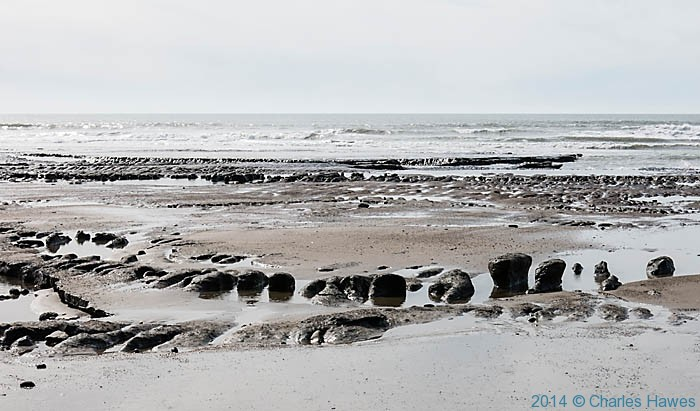 Peat deposits at beach near Tywyn photographed from the Wales Coast Path by Charles Hawes