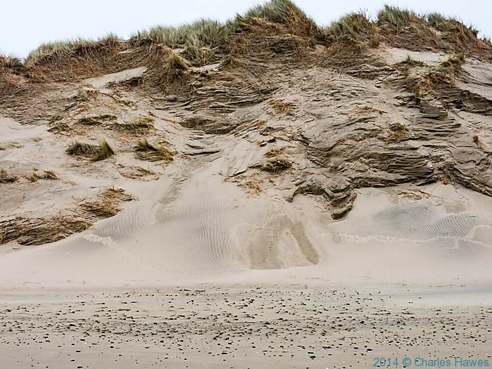 Sand dunes near Shell Island, Gwynedd, photographed from the Wales Coast Path by Charles Hawes