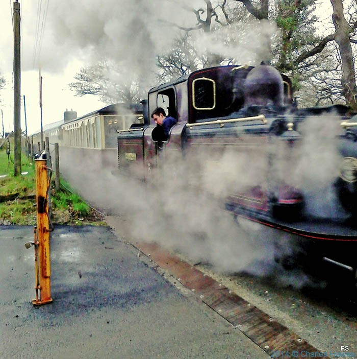 The Ffestioniog railway, leaving Boston Halt station, photographed by Paul Steer