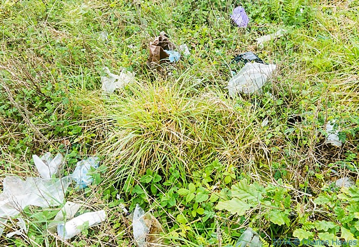 Litter by the railway line near Criccieth, photographed from The Wales Coast Path by Charles Hawes