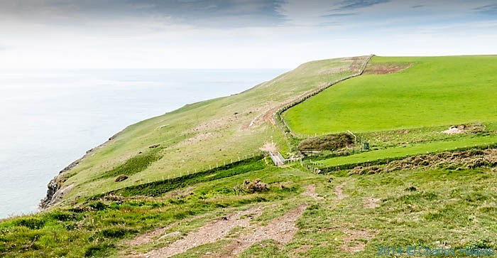 The Wales Coast Path  near Trwyn yr Wylfa, photographed by Charles Hawes