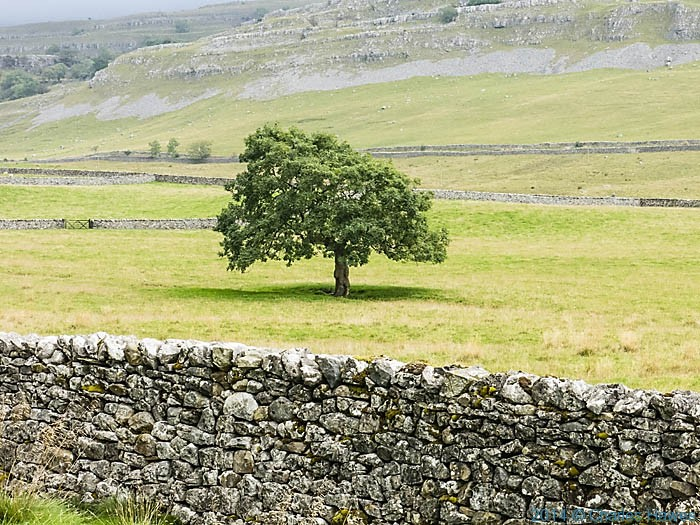 Valley of the River Doe, Yorkshire Dales, photographed by Charles Hawes