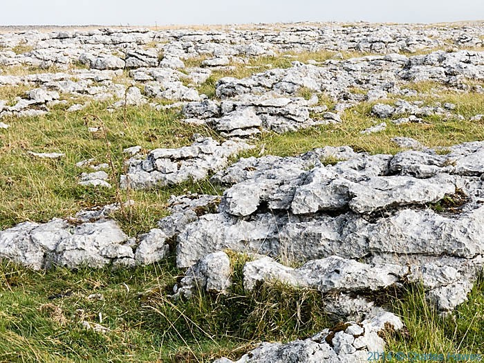 Limestone pavement of Great Kinmond, photographed from the Dales High Way by Charles Hawes