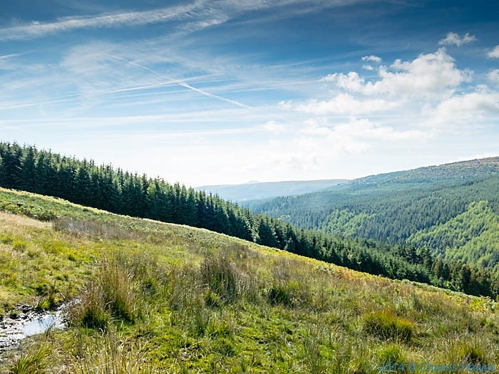View over the Mynydd Du Forest, photographed by Charles Hawes