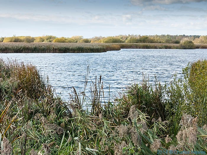 Lake near Stodmarsh, Kent, photographed by Charles Hawes