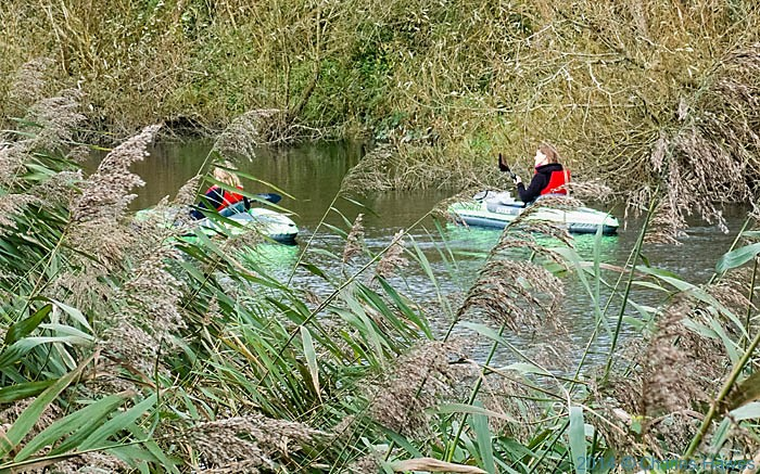 Canoeists on the Stour, photographed from The Stour Valley walk by Charles Hawes