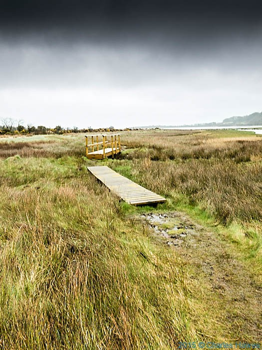 Marsh by Traeth Dulas, Anglesey, photographed from The Wales Coast Path by Charles Hawes