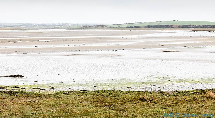 The muddy estuary of the Afon Alaw near Llanfachraeth, Anglesey, photographed from The Wales Coast Path by Charles Hawes