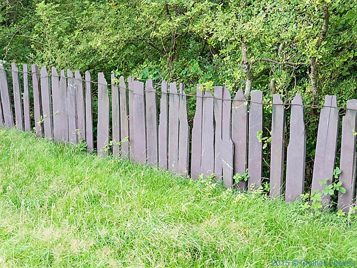 Slate fence near tal-y-bont, photographed from The Wales Coast path by Charles Hawes