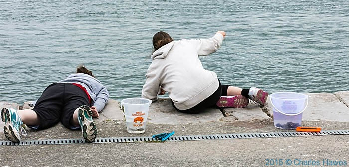 Crabbing on the promenade at Conwy, photographed from The Wales Coast Path by Charles Hawes