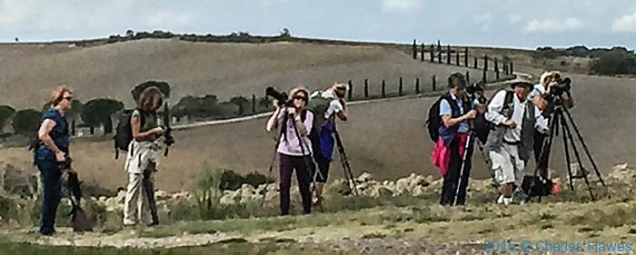 Group of photographers at Vitaleta near Pienza, photographed by Charles Hawes