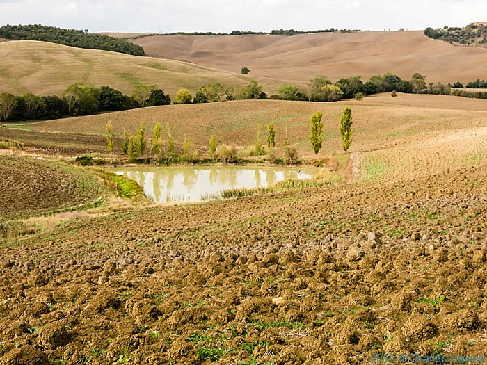 Pond in countryside near Pienza photographed by Charles Hawes from a ring walk