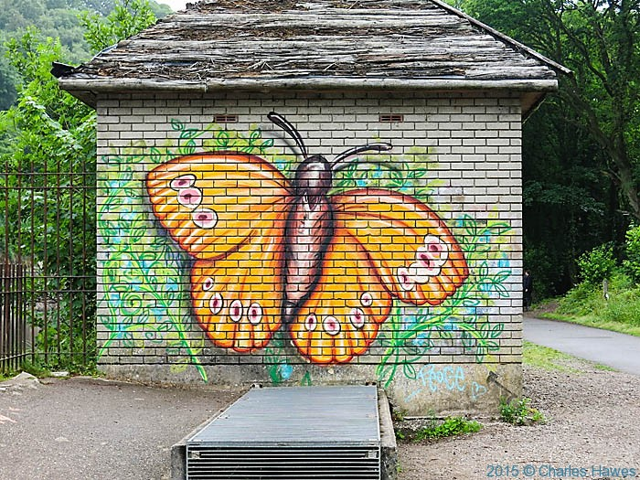 Graffiti on the Cambrian way in Cardiff, photographed by Charles Hawes