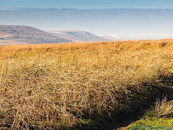 View from the Cambrian Way near Mynydd Garn-wen photographed by Charles Hawes
