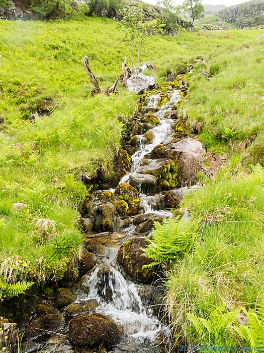 Stream in Glenn Meadall, Knoydart, photographed by Charles Hawes