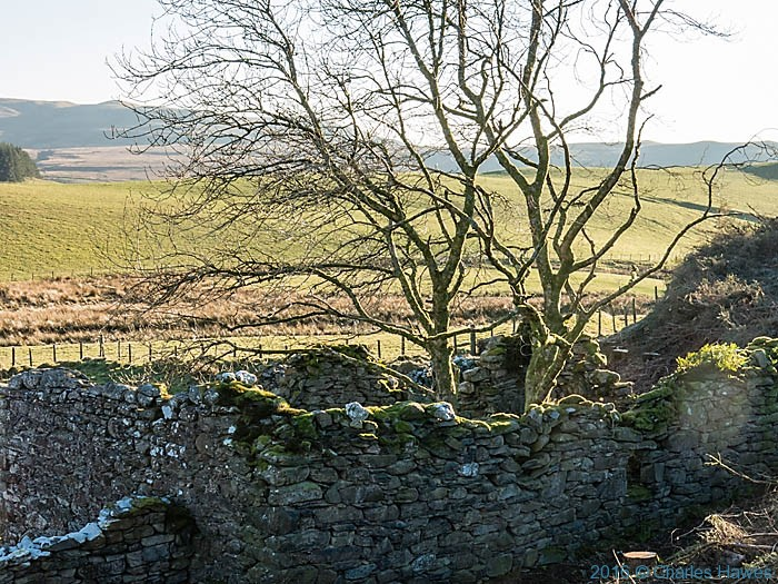Ruin on the Cambrian Way in Ceredigion near Strata Florida, photographed by Charles Hawes