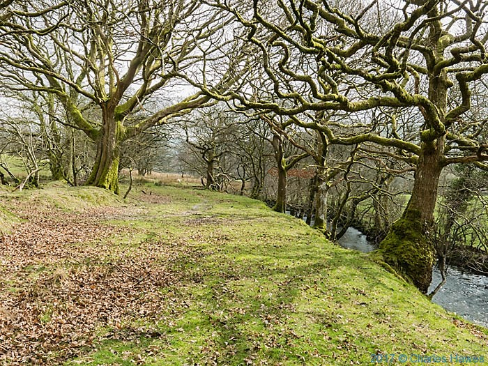 The River Teifi, photographed from The Cambrian Way near Strata Florida by Charles Hawes