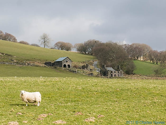 Bron - y- berlian, near Strata Florida, photographed from The Cambrian Way by Charles Hawes