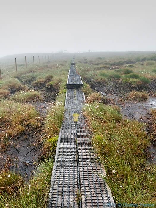 Path to Cadair Berwyn from Bwlch Maen Gwynedd, photographed by Charles Hawes