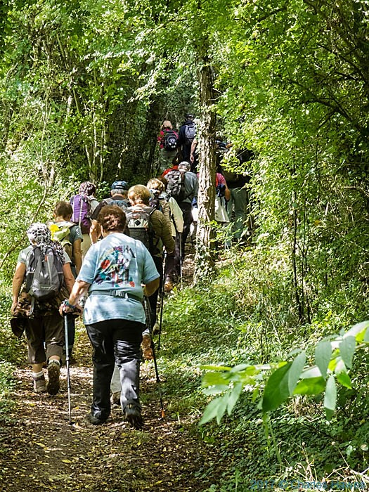 French Walking Group on the GR46 near Cordes sur Ciel, photographed by Charles Hawes