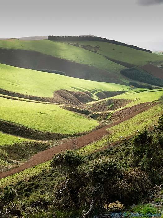 Cambrain Way near Mynydd Lluestcethingrych, photographed by Charles Hawes