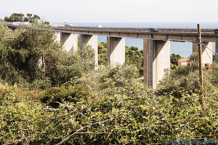 The Timon Lepidus Trip 2018 between Castellaro and Imperia: image by Charles Hawes