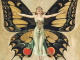 The Flapper Leyendecker Collection
