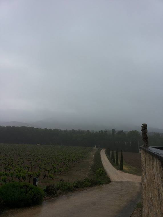 Charles-Peguy-Costa-Vin (3)