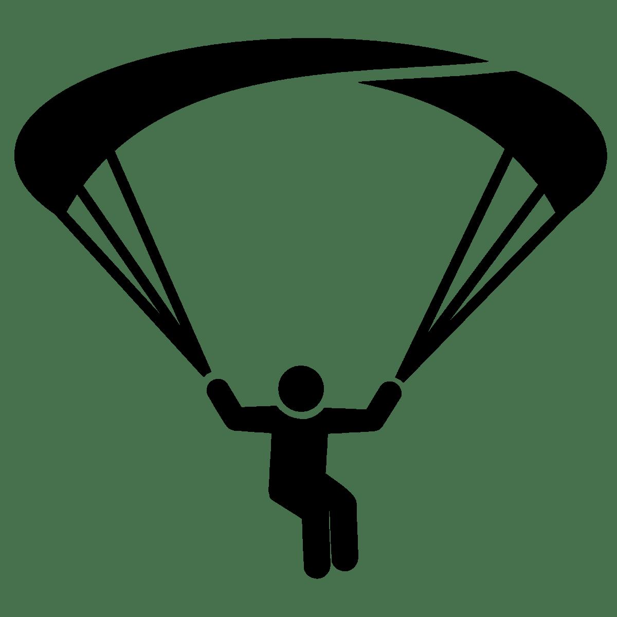 Parcours Et Curriculum Vitae