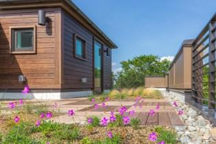 harleston row living roof